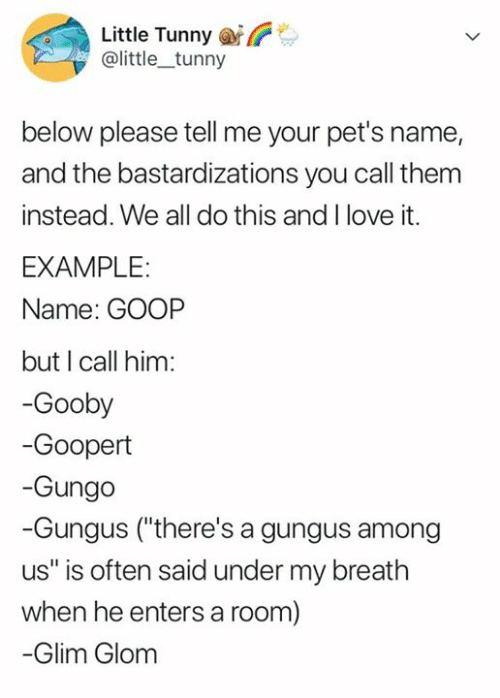 "call them: Little Tunny  @little_tunny  below please tell me your pet's name,  and the bastardizations you call them  instead. We all do this and I love it.  EXAMPLE:  Name: GOOP  but I call him:  -Gooby  -Goopert  -Gungo  -Gungus (""there's a gungus among  us"" is often said under my breath  when he entersa room)  -Glim Glom"