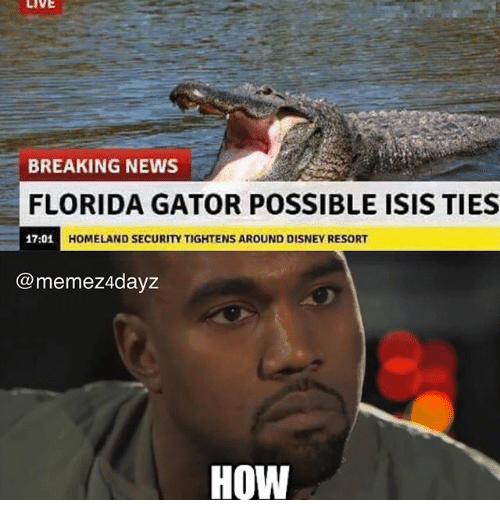 live breaking news florida gator possible isis ties 17 01 h 24735628 🅱 25 best memes about florida gator florida gator memes