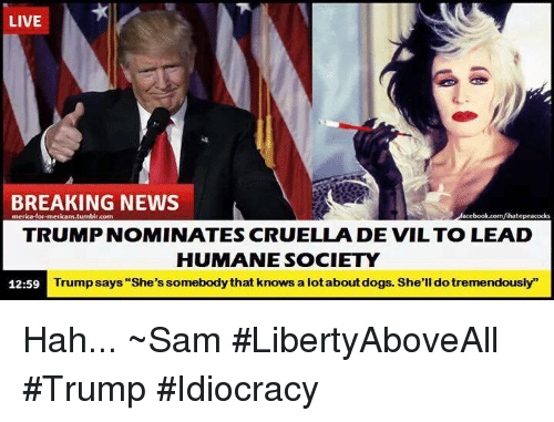 "Trump Idiocracy: LIVE  BREAKING NEWS  merica-for-mericani.tumblr.com  Vihatepeacocks  TRUMP NOMINATES CRUELLA DE VIL TO LEAD  HUMANE SOCIETY  Trump says ""She's somebody that knows a lotabout dogs. She'll dotremendously""  12:59 Hah...  ~Sam #LibertyAboveAll #Trump #Idiocracy"