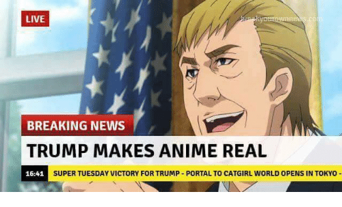 Animals, Dank, and News: LIVE  BREAKING NEWS  TRUMP MAKES ANIME REAL  SUPER TUESDAY VICTORY FOR TRUMP PORTALTO CATGIRL WORLD OPENS IN TOKYO  16:41