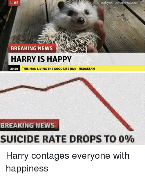 Living The Good Life: LIVE  breakvourownnews.com  BREAKING NEWS  HARRY IS HAPPY  20:50  THIS MAN LIVING THE GOOD LIFE RN!! HEDGEFAM  BREAKING NEWS  SUICIDE RATE DROPS TO 0% Harry contages everyone with happiness