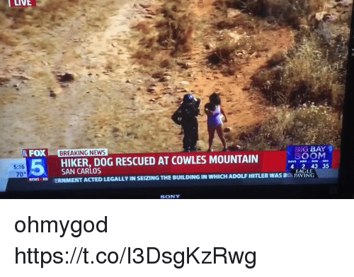 Funny, News, and Sony: LIVE  FOX BREAKING NEWS  BIG BAY  SOON  4 2 43 35  HIKER,DOG RESCUED AT COWLES MOUNTAIN  5:16  70°  EWSD ERNMENT ACTED LEGALLY IN SEIZING THE BUILDING IN WHICH ADOLF HITLER WAS BO PAVING  EAGLE  SONY ohmygod https://t.co/I3DsgKzRwg