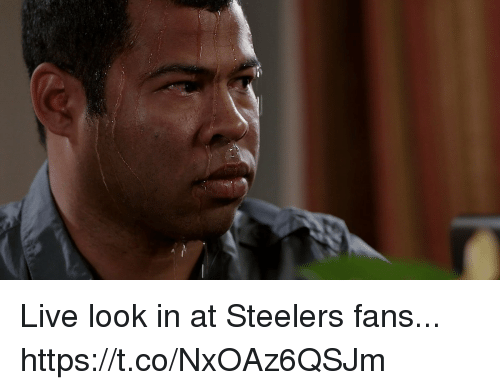 Football, Nfl, and Sports: Live look in at Steelers fans... https://t.co/NxOAz6QSJm