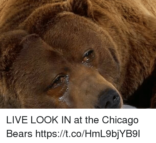 Chicago, Chicago Bears, and Football: LIVE LOOK IN at the Chicago Bears https://t.co/HmL9bjYB9l