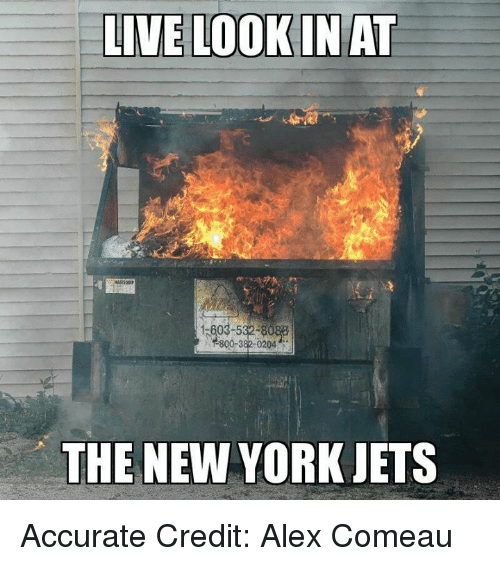 New York Jets: LIVE LOOKIN AT  15603-5  800-382-0204  THE NEW YORK JETS Accurate Credit: Alex Comeau
