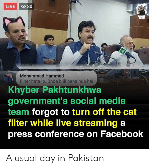 press conference: LIVE O 80  aneen  Mohammad Hammad  Filter hata lo. Bnda billi bana hua hai  Khyber Pakhtunkhwa  government's social media  team forgot to turn off the cat  filter while live streaming a  press conference on Facebook A usual day in Pakistan