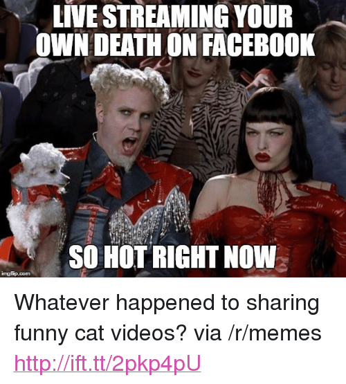 "funny cat: LIVE STREAMING YOUR  OWN DEATHON FACEBO0K  SO HOT RIGHT NOW <p>Whatever happened to sharing funny cat videos? via /r/memes <a href=""http://ift.tt/2pkp4pU"">http://ift.tt/2pkp4pU</a></p>"