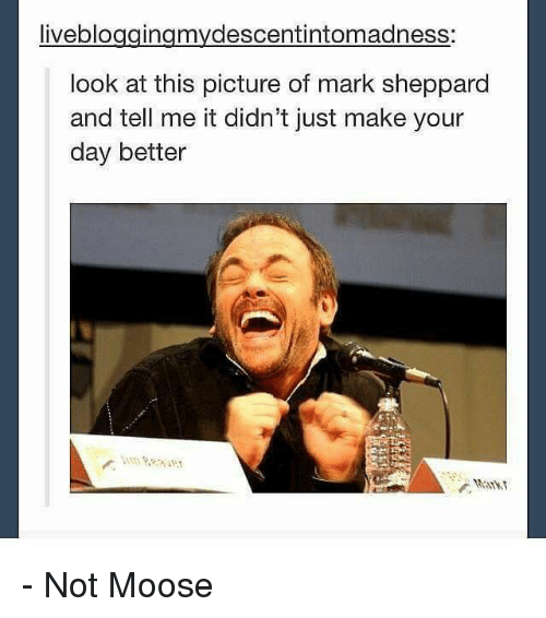 Memes, Pictures, and 🤖: liveblo  look at this picture of mark sheppard  and tell me it didn't just make your  day better - Not Moose