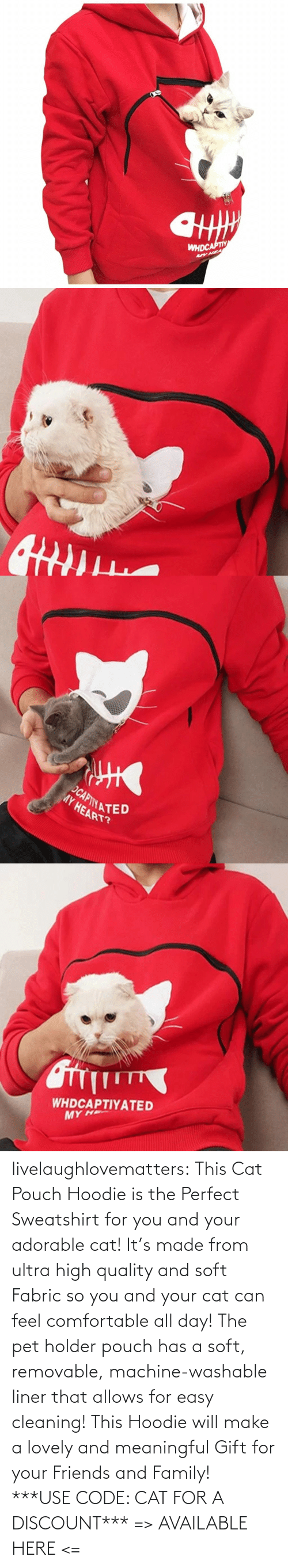 pet: livelaughlovematters: This Cat Pouch Hoodie is the Perfect Sweatshirt for you and your adorable cat! It's made from ultra high quality and soft Fabric so you and your cat can feel comfortable all day! The pet holder pouch has a soft, removable, machine-washable liner that allows for easy cleaning! This Hoodie will make a lovely and meaningful Gift for your Friends and Family!  ***USE CODE: CAT FOR A DISCOUNT*** => AVAILABLE HERE <=
