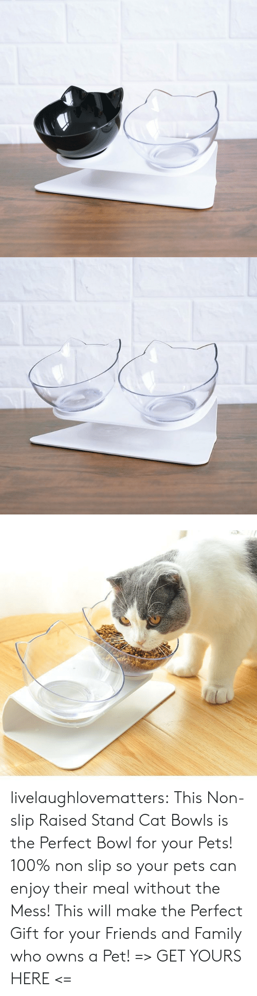 slip: livelaughlovematters: ThisNon-slip Raised Stand Cat Bowls is the Perfect Bowl for your Pets! 100% non slip so your pets can enjoy their meal without the Mess! This will make the Perfect Gift for your Friends and Family who owns a Pet! => GET YOURS HERE <=
