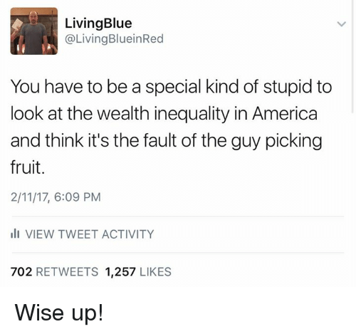 Special Kind Of Stupid: Living Blue  @Living BlueinRed  You have to be a special kind of stupid to  look at the wealth inequality in America  and think it's the fault of the guy picking  fruit.  2/11/17, 6:09 PM  ill VIEW TWEET ACTIVITY  702 RETWEETS 1,257  LIKES Wise up!