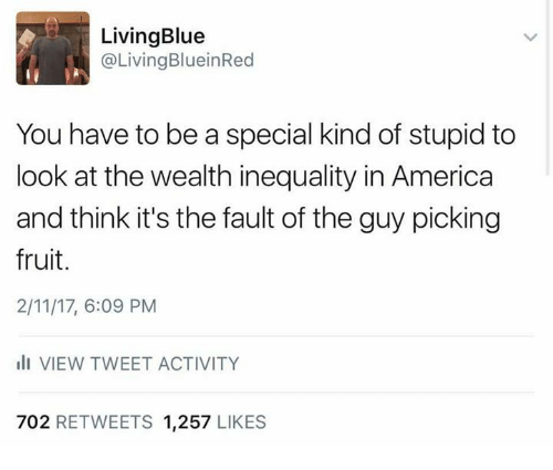 Special Kind Of Stupid: Living Blue  @Living BlueinRed  You have to be a special kind of stupid to  look at the wealth inequality in America  and think it's the fault of the guy picking  fruit.  2/11/17, 6:09 PM  III VIEW TWEET ACTIVITY  702 RETWEETS  1,257  LIKES
