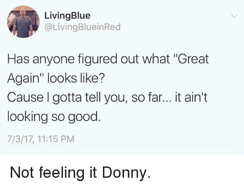 "Memes, Good, and 🤖: LivingBlue  @LivingBlueinRed  Has anyone figured out what ""Great  Again looks like?  Cause I gotta tell you, so far... it ain't  looking so good  7/3/17, 11:15 PM Not feeling it Donny."