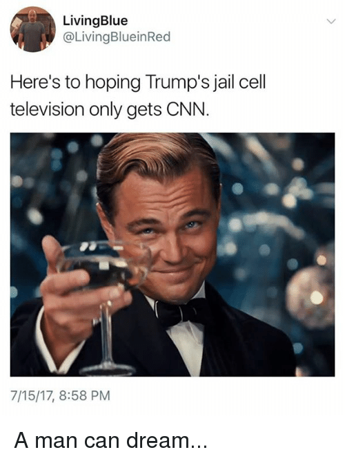 cnn.com, Jail, and Memes: LivingBlue  @LivingBlueinRed  Here's to hoping Trump's jail cell  television only gets CNN.  7/15/17, 8:58 PM A man can dream...