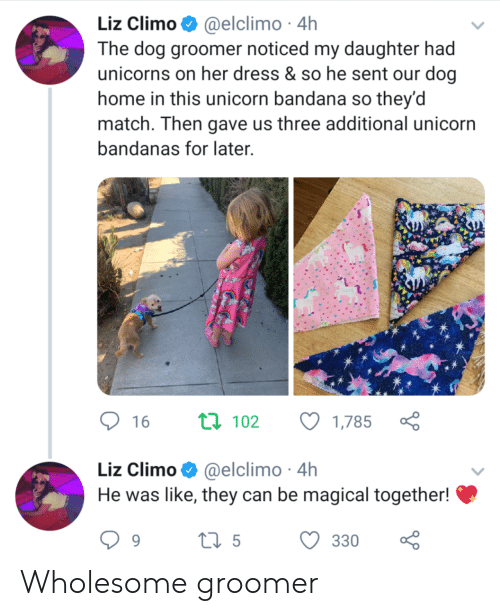 liz: Liz Climo @elclimo 4h  The dog groomer noticed my daughter had  unicorns on her dress & so he sent our dog  home in this unicorn bandana so they'd  match. Then gave us three additional unicorn  bandanas for later  ti 102  16  1,785  Liz Climo@elclimo 4h  He was like, they can be magical together!  ti5  330  9 Wholesome groomer