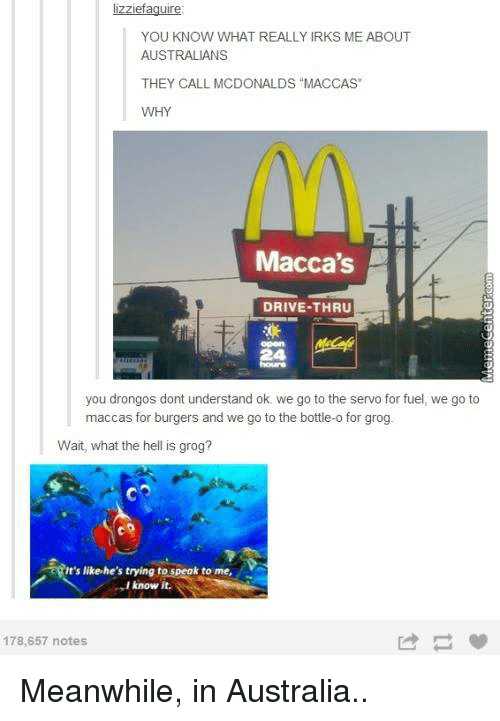 """Meanwhile In Australia: lizziefaguire:  YOU KNOW WHAT REALLY IRKS ME ABOUT  AUSTRALIANS  THEY CALL MCDONALDS """"MACCAS  WHY  Macca's  DRIVE-THRU  you drongos dont understand ok we go to the servo for fuel, we go to  maccas for burgers and we go to the bottle-o for grog  Wait, what the hell is grog?  it's like he's trying to speak to me,  V  know it.  178,657 notes Meanwhile, in Australia.."""