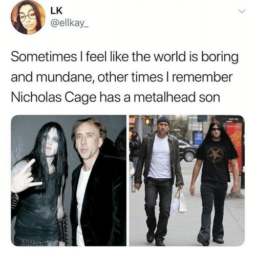 Dank, World, and 🤖: LK  @ellkay  Sometimes l feel like the world is boring  and mundane, other times I remember  Nicholas Cage has a metalhead son