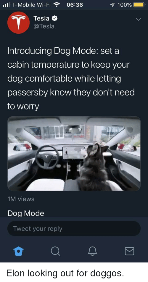 looking out: ll T-Mobile Wi-Fi06:36  100%  Tesla  @Tesla  Introducing Dog Mode: set a  cabin temperature to keep your  dog comfortable while letting  passersby know they don't need  to worry  1M views  Dog Mode  Tweet your reply Elon looking out for doggos.