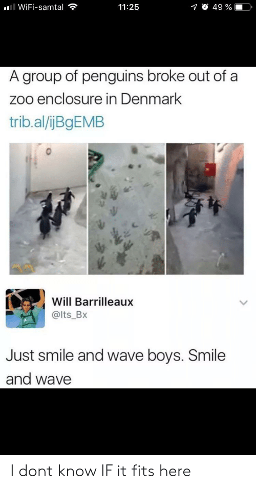 zoo: ll WiFi-samtal  O 49 %  11:25  A group of penguins broke out of a  zoo enclosure in Denmark  trib.al/ijBgEMB  Will Barrilleaux  @lts_Bx  Just smile and wave boys. Smile  and wave I dont know IF it fits here