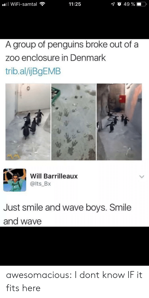Penguins: ll WiFi-samtal  O 49 %  11:25  A group of penguins broke out of a  zoo enclosure in Denmark  trib.al/ijBgEMB  Will Barrilleaux  @lts_Bx  Just smile and wave boys. Smile  and wave awesomacious:  I dont know IF it fits here
