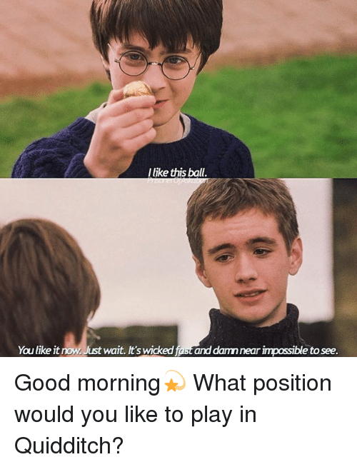 Memes, Good Morning, and Good: llike this ball  You like it now, Just wait. It's wicked fast and damn near impossible to see. Good morning💫 What position would you like to play in Quidditch?