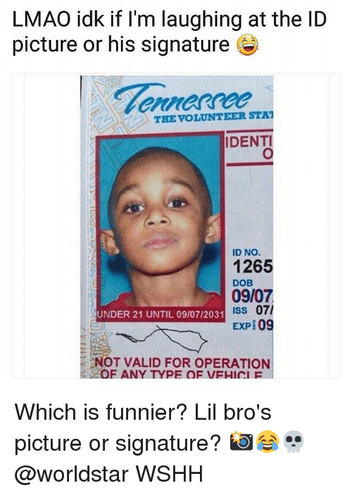 Lmao, Memes, and Worldstar: LMAO idk if l'm laughing at the ID  picture or his signature  THE VOLUNTEER STA  IDENTI  ID NO.  1265  DOB  09/07  ISs 07/  EXP 09  UNDER 21 UNTIL 09/07/2031  NOT VALID FOR OPERATION  OF ANY TYPE OF VEHICIF Which is funnier? Lil bro's picture or signature? 📸😂💀 @worldstar WSHH