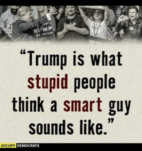 """stupid people: LMP  """"Trump is what  stupid people  think a smart guy  sounds like.  CUPY DEMOCRATS"""