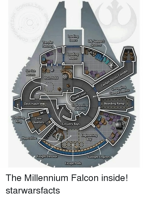 Millennium Falcon: Loading  Doors  Life Support  Transfer  Systems  Hatches  r  Loading  Room  Corridor  ccess Cockpit Compartments  Service  Access  Main Hold  Laser  Quad Boarding Ramp  Engineering  Deck Hatch  Stations  Docking  Crew  Ring  Quarters  Circuitry Bays  Engineering  Hyperdrive  Bay  Freight Elevator  Sublight Engines  Escape Pods The Millennium Falcon inside! starwarsfacts