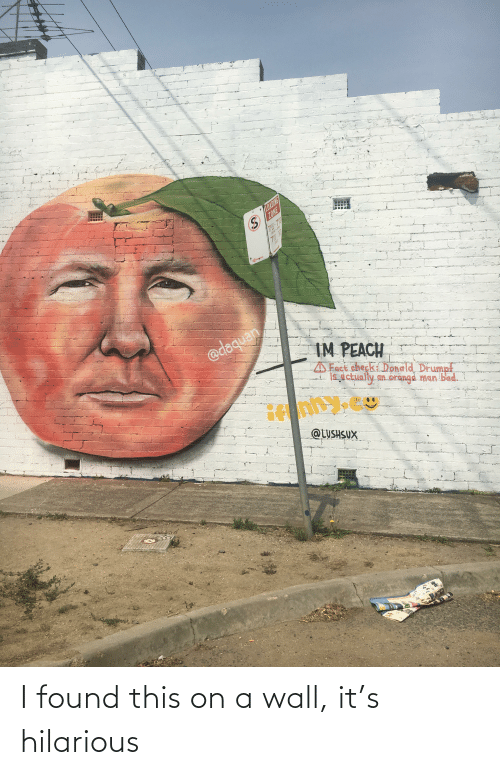 Daquan: LOADING  ZONE  780-79  MON-FRI  SAT  @daquan  IM PEACH  Fact check Donald Drumpf  is,dctually an orangd man bad.  @LUSHSUX I found this on a wall, it's hilarious
