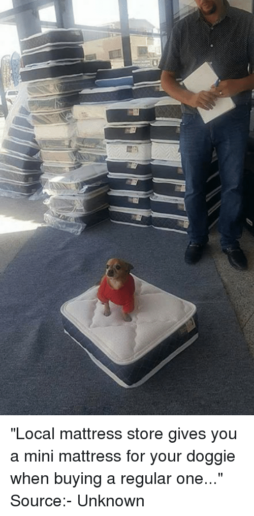 Local mattress store gives you a mini mattress for your for When to buy a mattress