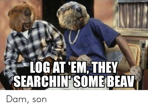 dam son: LOG AT EM, THEY  SEARCHIN' SOME BEAV Dam, son