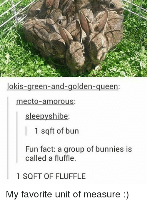 Bunnies, Memes, and Queen: lokis  reen-and-golden  queen:  mecto amorous:  slee  shibe  1 sqft of bun  Fun fact: a group of bunnies is  called a fluffle.  1 SQFT OF FLUFFLE My favorite unit of measure :)