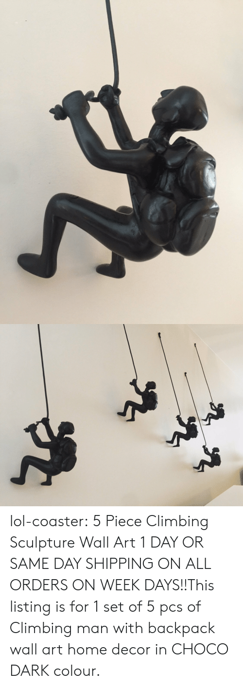 Wall Art: lol-coaster:    5 Piece Climbing Sculpture Wall Art      1 DAY OR SAME DAY SHIPPING ON ALL ORDERS ON WEEK DAYS!!This listing is for 1 set of 5 pcs of Climbing man with backpack wall art home decor in CHOCO DARK colour.