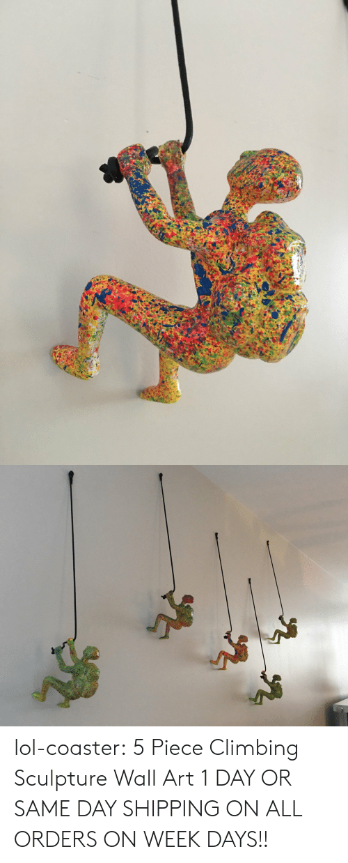 Wall Art: lol-coaster:    5 Piece Climbing Sculpture Wall Art      1 DAY OR SAME DAY SHIPPING ON ALL ORDERS ON WEEK DAYS!!