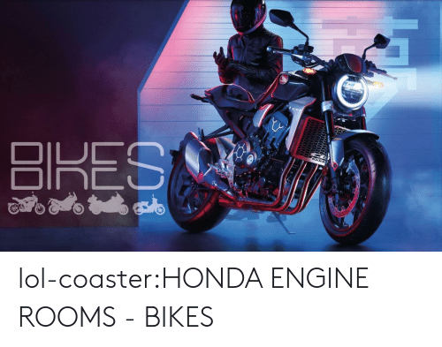 Honda: lol-coaster:HONDA ENGINE ROOMS - BIKES