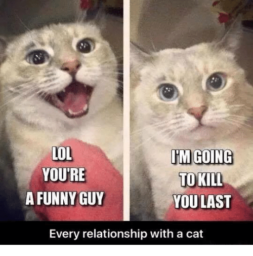 Fun Guy Meme : Lol im going youre to kill a funny guy you last every