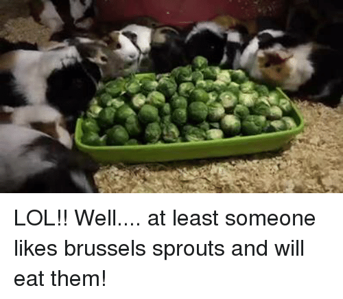 brussels sprout: LOL!! Well.... at least someone likes brussels sprouts and will eat them!