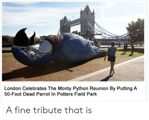 monty python: London Celebrates The Monty Python Reunion By Putting A  50-Foot Dead Parrot In Potters Field Park A fine tribute that is