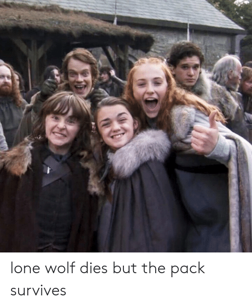 lone wolf: lone wolf dies but the pack survives