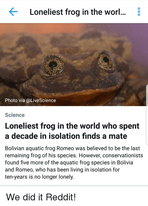 Frog Species: Loneliest frog in the worl... 8  Photo via @LiveScience  Science  Loneliest frog in the world who spent  a decade in isolation finds a mate  Bolivian aquatic frog Romeo was believed to be the last  remaining frog of his species. However, conservationists  found five more of the aquatic frog species in Bolivia  and Romeo, who has been living in isolation for  ten-years is no longer lonely.