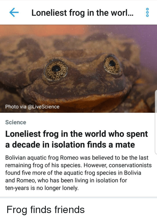 Frog Species: Loneliest frog in the worl  s0  Photo via @LiveScience  Science  Loneliest frog in the world who spent  a decade in isolation finds a mate  Bolivian aquatic frog Romeo was believed to be the last  remaining frog of his species. However, conservationists  found five more of the aquatic frog species in Bolivia  and Romeo, who has been living in isolation for  ten-years is no longer lonely.
