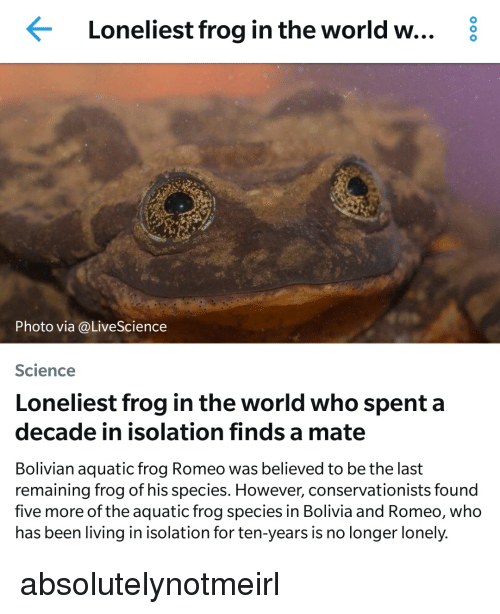 Frog Species: Loneliest frog in the world w... 8  hoto via @LiveScience  Science  Loneliest frog in the world who spent a  decade in isolation finds a mate  Bolivian aquatic frog Romeo was believed to be the last  remaining frog of his species. However, conservationists found  five more of the aquatic frog species in Bolivia and Romeo, who  has been living in isolation for ten-years is no longer lonely