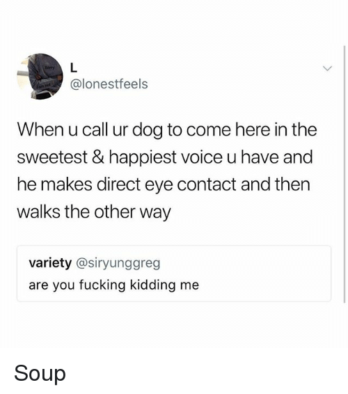 Are You Fucking Kidding: @lonestfeels  When u call ur dog to come here in the  sweetest & happiest voice u have and  he makes direct eye contact and then  walks the other way  variety @siryunggreg  are you fucking kidding me Soup