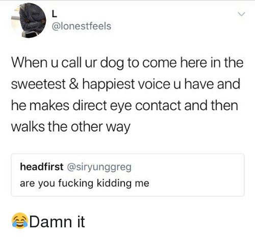 Are You Fucking Kidding: @lonestfeels  When u call ur dog to come here in the  sweetest & happiest voice u have and  he makes direct eye contact and then  walks the other way  headfirst @siryunggreg  are you fucking kidding me 😂Damn it