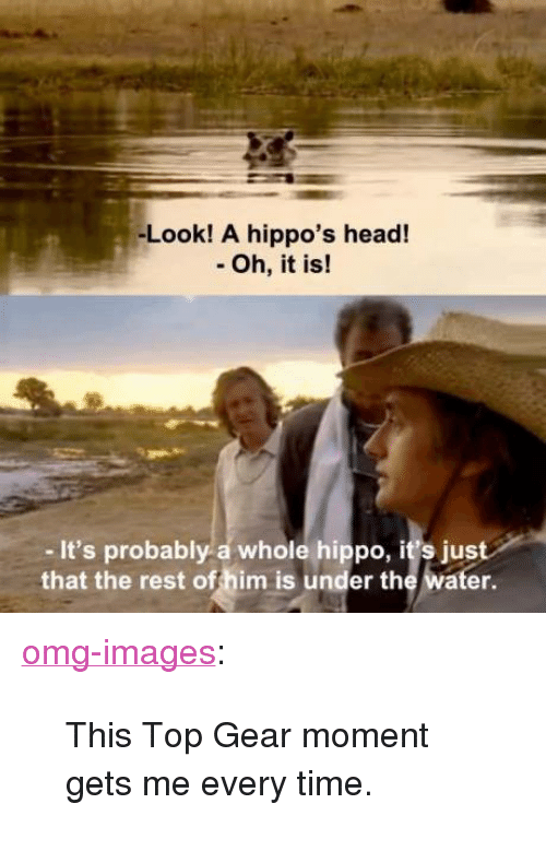 """Top Gear: -Look! A hippo's head!  - Oh, it is!  - It's probably a whole hippo, it's just  that the rest of him is under the water. <p><a href=""""https://omg-images.tumblr.com/post/157740245012/this-top-gear-moment-gets-me-every-time"""" class=""""tumblr_blog"""">omg-images</a>:</p>  <blockquote><p>This Top Gear moment gets me every time.</p></blockquote>"""