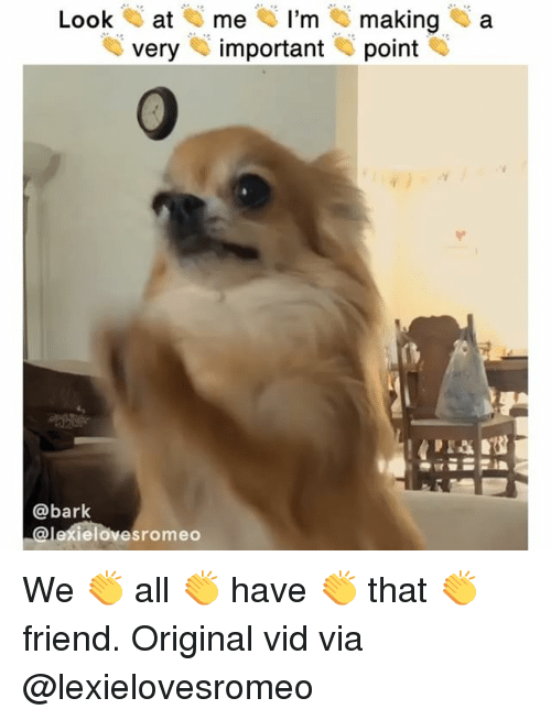 Memes, 🤖, and Friend: Look at me I'm making a  veryimportant point  @bark  @lexielovesromeo We 👏 all 👏 have 👏 that 👏 friend. Original vid via @lexielovesromeo