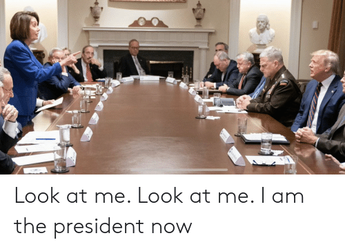 President Now: Look at me. Look at me. I am the president now