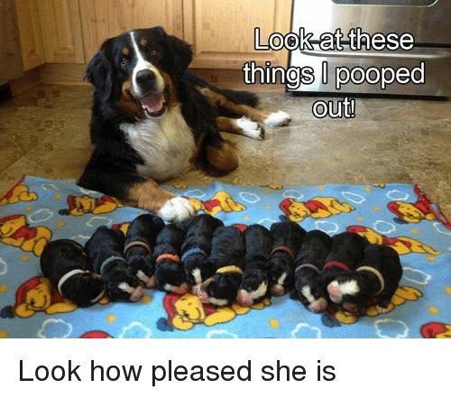 SIZZLE: Look at these  things pooped  Out! Look how pleased she is