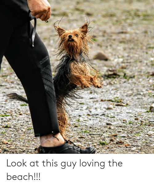 the beach: Look at this guy loving the beach!!!