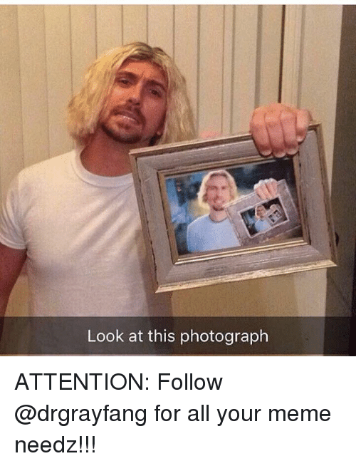 Look At This Photograph: Look at this photograph ATTENTION: Follow @drgrayfang for all your meme needz!!!